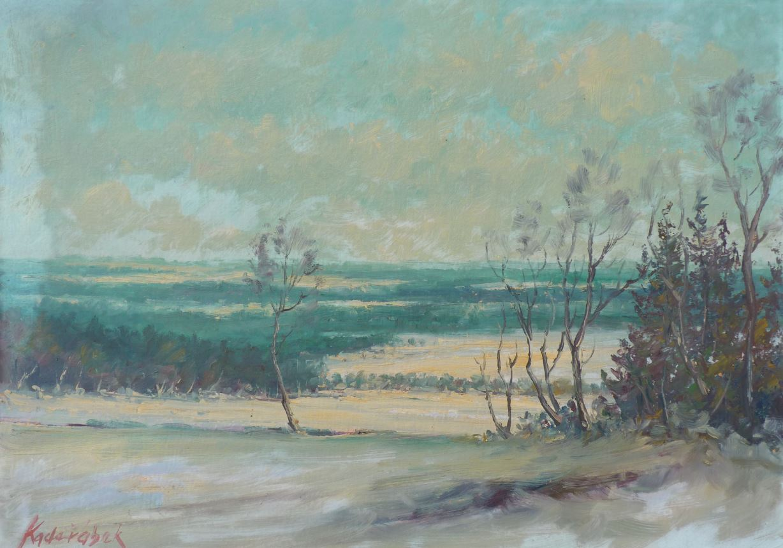 Zima u Svratky