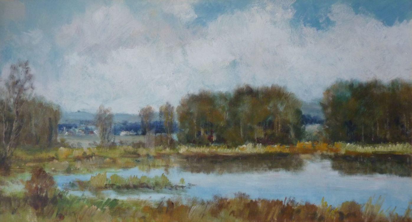 Ronovský rybník