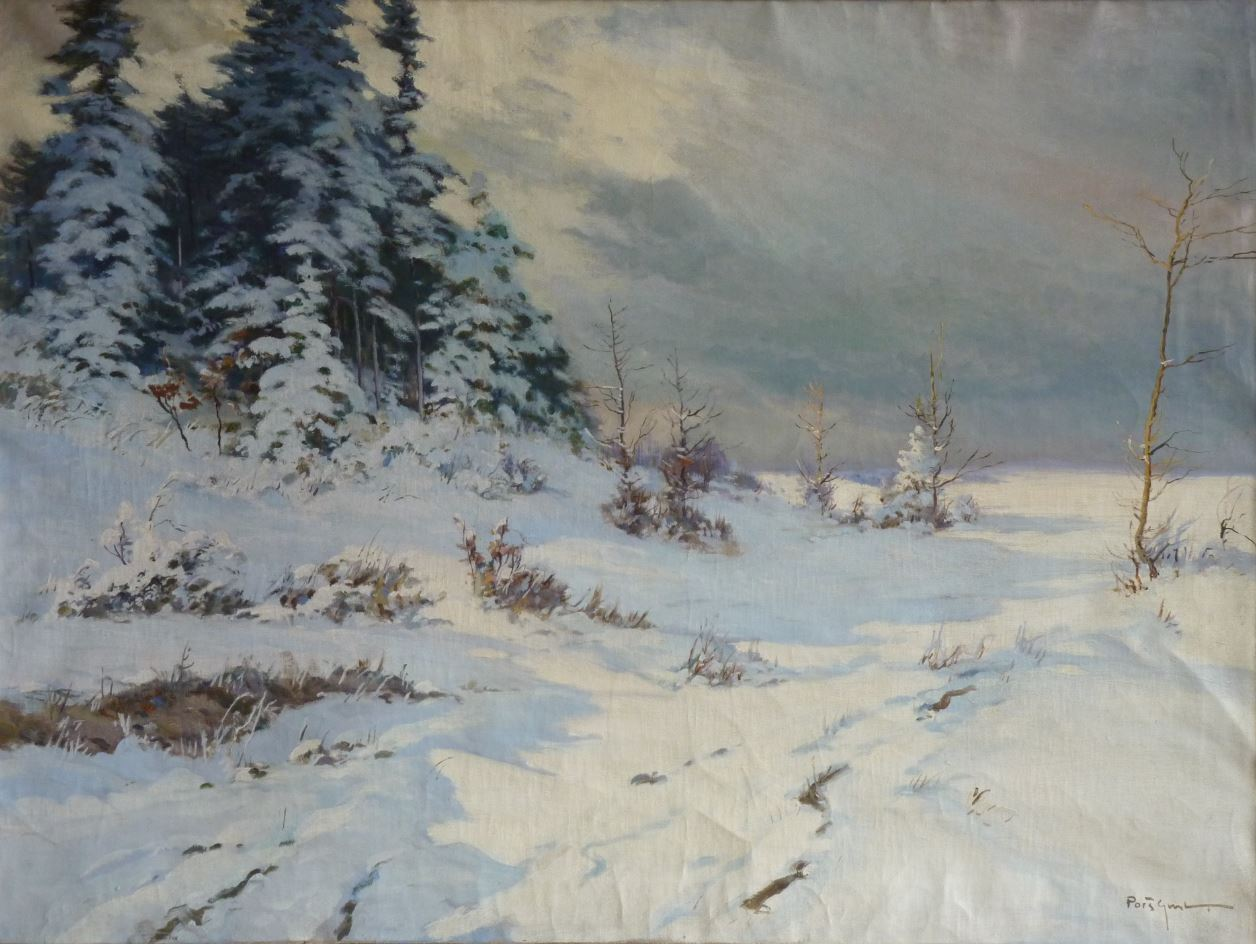 Zima u Skutče