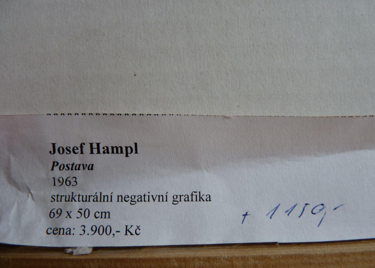 636723827883106346_hampl6.JPG